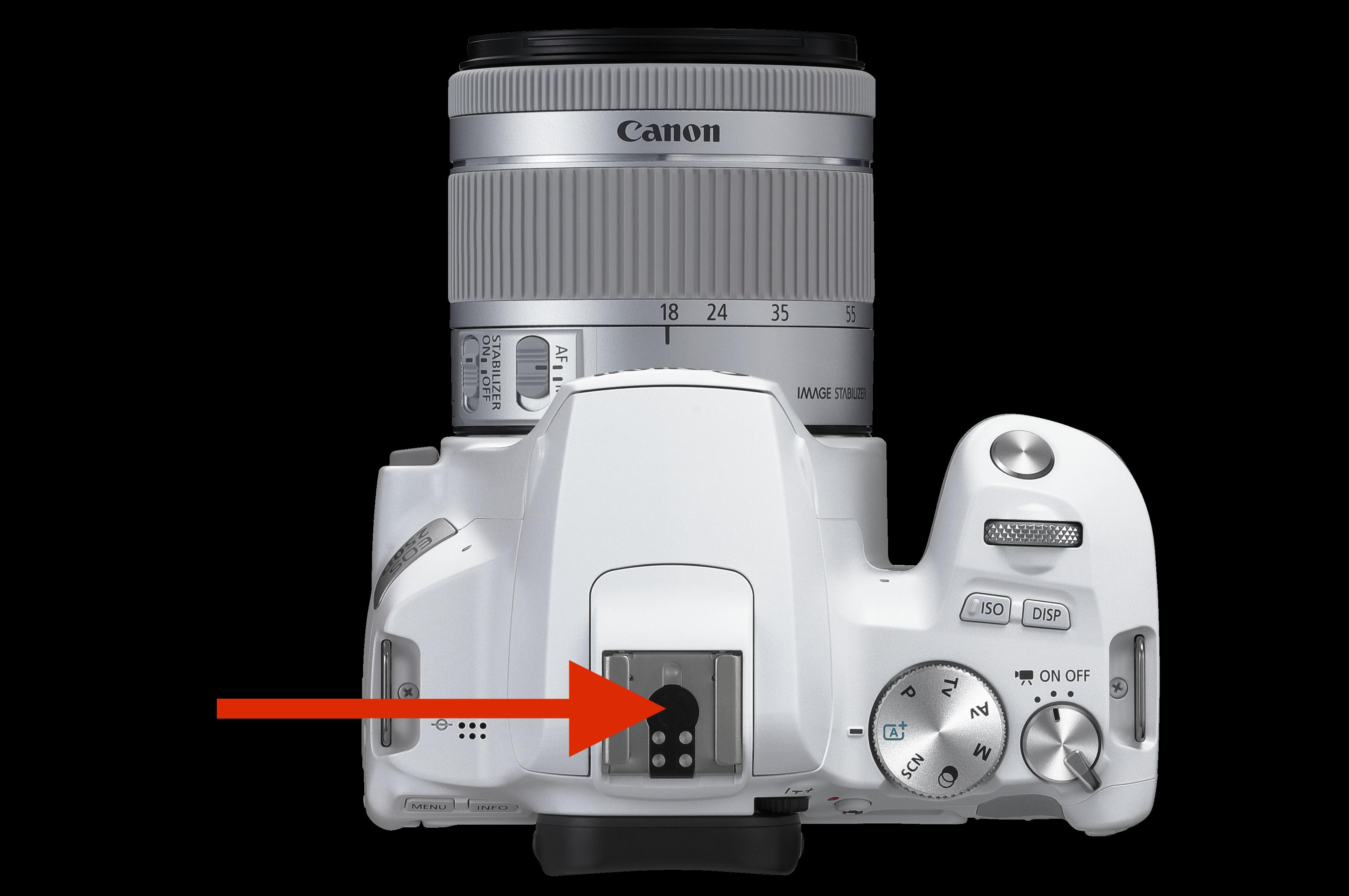 Fehlender Universal-Pin an der Canon EOS 250D ©Canon