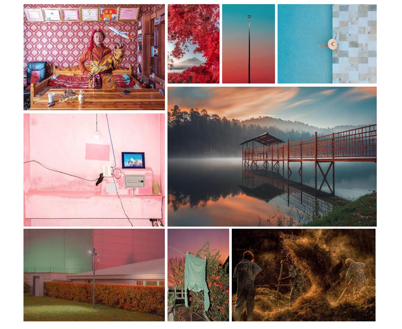 Bildercollage Sony World Photography Awards 2021