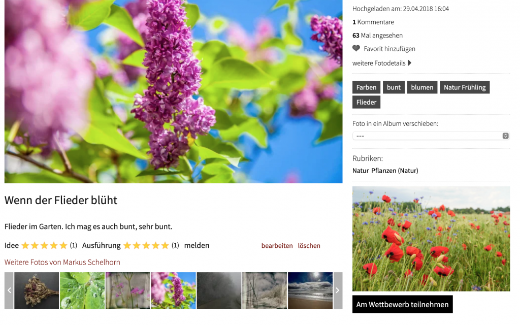 c't Fotografie-Wettbewerb: Flower Power